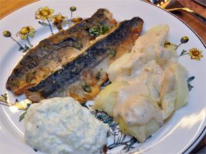 Stekt makrell med Tzatziki